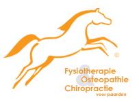 Fysiotherapie voor paarden